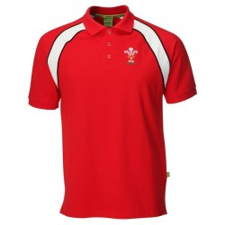 Polo Wales Rugby