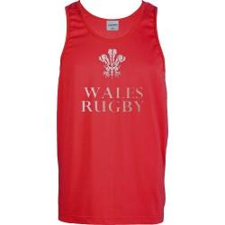 T-shirt ligas Wales