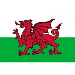 Bandera de País de Gal·les
