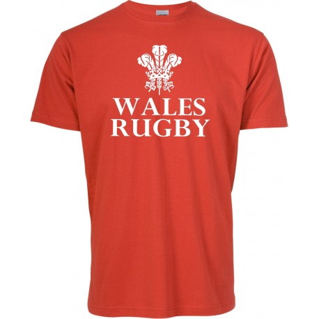 T-shirt menino Wales Rugby