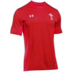 Samarreta d'entrenament Wales